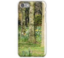 Daffodil Woods iPhone Case/Skin
