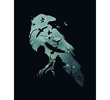 Crow game of thrones Photographic Print
