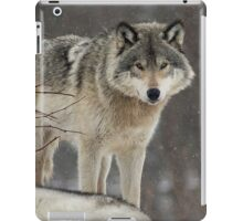 Dominant Wolf iPad Case/Skin