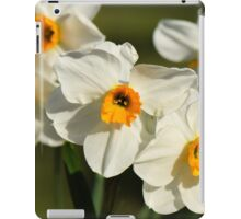 Daffodils in Spring in a Kentish garden iPad Case/Skin