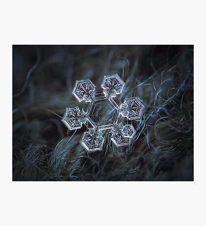 Icy jewel Photographic Print
