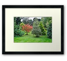 Leith Hall Gardens 2 (Huntly, Aberdeenshire, Scotland) Framed Print