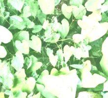Heart - Green - Plant - Spring Sticker