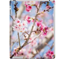Cherry Blossoms in Bloom iPad Case/Skin