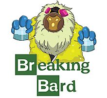 Breaking Bard Photographic Print