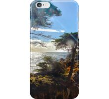The Lonely Cypress Tree on 17 mile drive iPhone Case/Skin