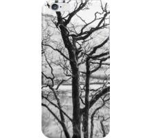 Overlooking Brothers Water iPhone Case/Skin