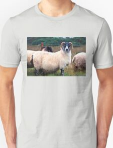Don't Look at Me Like I was a Wet Sweater (On the road to Mallaig, Scotland) Unisex T-Shirt