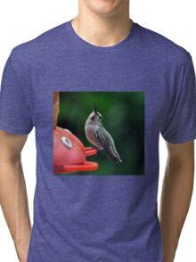 ALRIGHT MR. De MILLE,  I AM READY FOR MY CLOSEUP Tri-blend T-Shirt