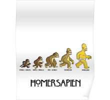 Homer Evolution Poster