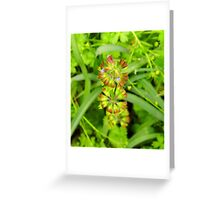 Three Tiered Cancerweed Greeting Card