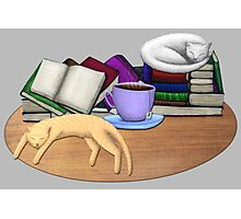 Cat Nap with Books & Tea (White & Ginger) Photographic Print