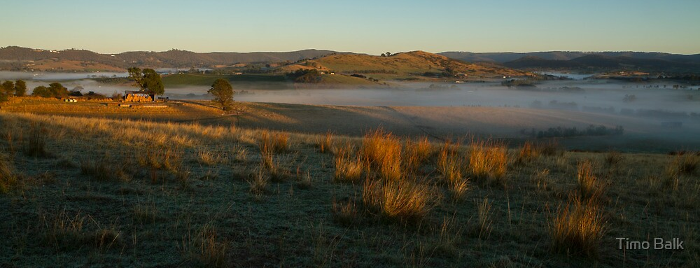 Morning Light - Yarra Valley by Timo Balk