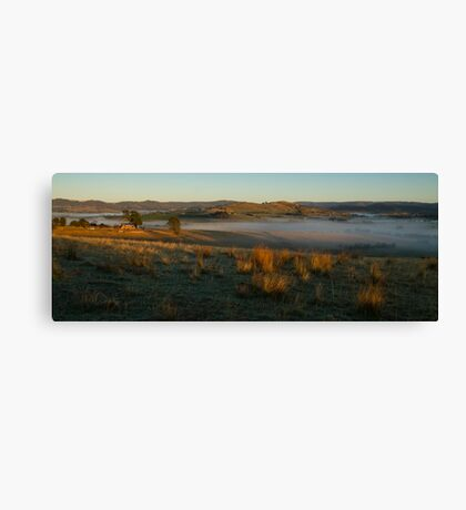 Morning Light - Yarra Valley Canvas Print