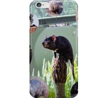 Less Common Australian Creatures iPhone Case/Skin