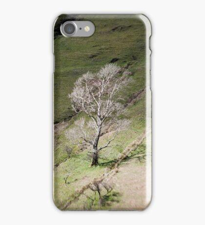 Grey Tree iPhone Case/Skin
