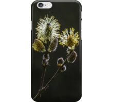 Male Goat Willow iPhone Case/Skin
