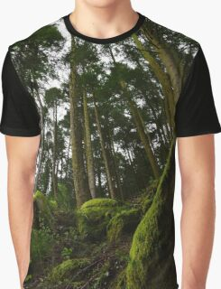 Landscape mossy rock and soaring pine trees Graphic T-Shirt