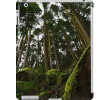 Landscape mossy rock and soaring pine trees iPad Case/Skin