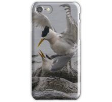 Mating Pair 2 iPhone Case/Skin