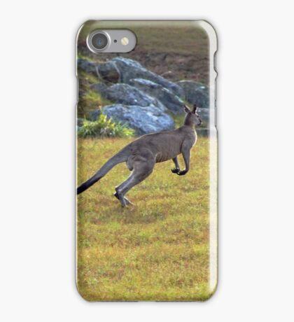 Eastern Grey Kangaroos iPhone Case/Skin