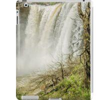 Noccalula iPad Case/Skin