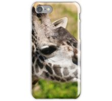 Giraffe - Cincinnati Zoo iPhone Case/Skin