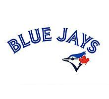 Toronto Blue Jays Wordmark with logo Photographic Print