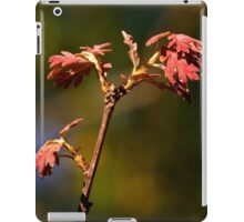 Close of Day iPad Case/Skin