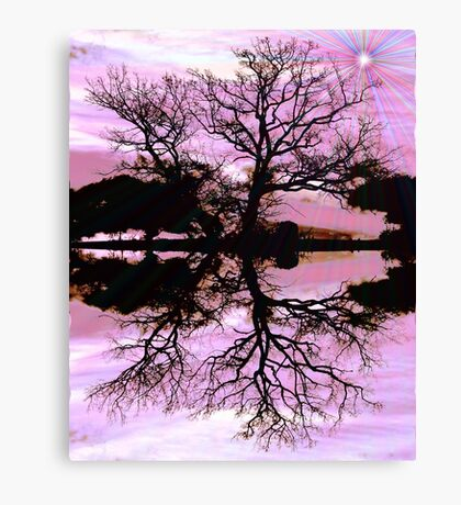Reflections 2 Canvas Print
