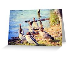 Ducks at Lake Conjola  Greeting Card
