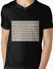 The Blue Danube Waltz Mens V-Neck T-Shirt