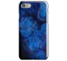 Art, Nature, and Evolution iPhone Case/Skin