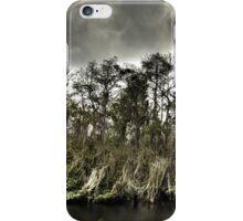 Everglades in HDR iPhone Case/Skin