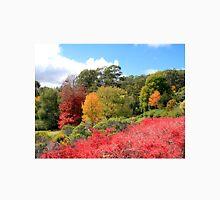 Autumn splendour, Adelaide Hills, South Australia Unisex T-Shirt