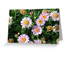 Beautiful light pink flowers natural background. Greeting Card