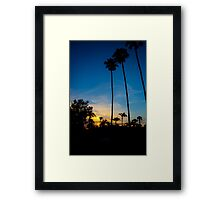 Palm Trees During a Sunset Framed Print