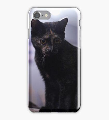 Soli the tortie cat #3 iPhone Case/Skin