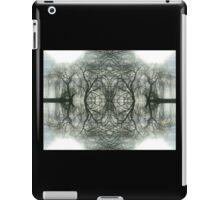 Willow Falls iPad Case/Skin