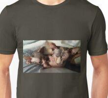 Mom and her kitten sphynx Unisex T-Shirt