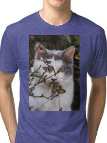 cute cat in the garden Tri-blend T-Shirt
