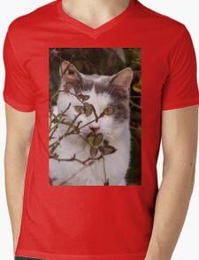 cute cat in the garden Mens V-Neck T-Shirt