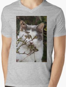 cute cat in the garden Mens V-Neck T-Shirt