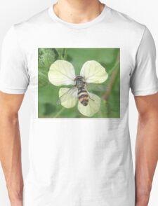 Bitty Bee? T-Shirt