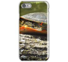 Sunbather  iPhone Case/Skin