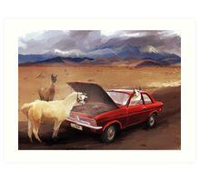 Llama Car Art Print