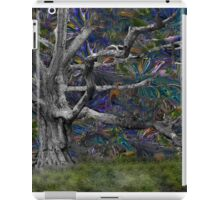 Psychedelic Oak iPad Case/Skin