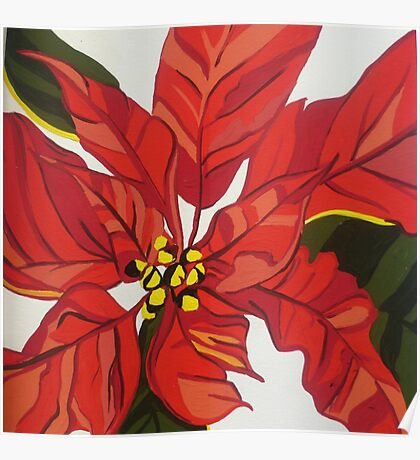 GORGEOUS BRIGHT RED POINSETTIA Poster