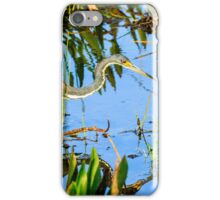 Tricolored Heron On The Hunt iPhone Case/Skin