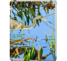 Tricolored Heron On The Hunt iPad Case/Skin
